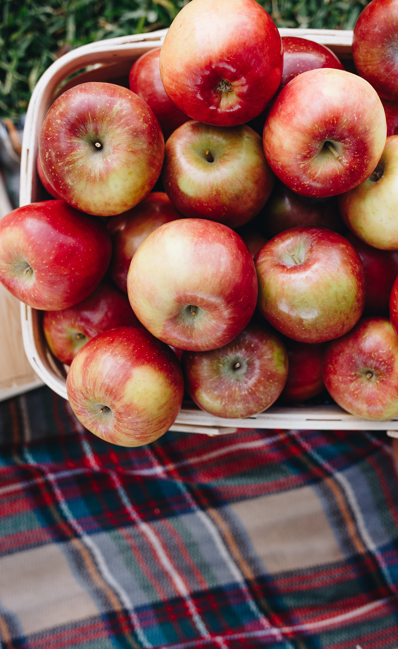 What to make with apples